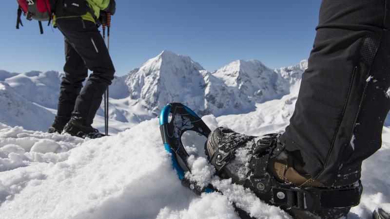Schneeschuh - Bergpanorama